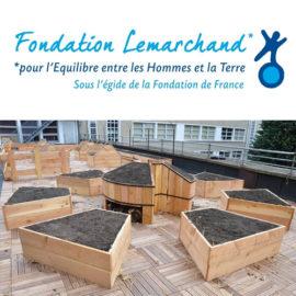 Fondation Lemarchand
